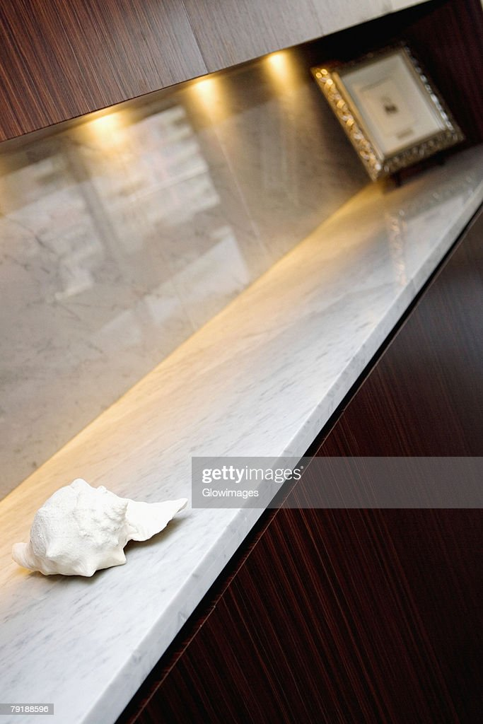 Seashell and a picture frame in a cabinet : Stock Photo