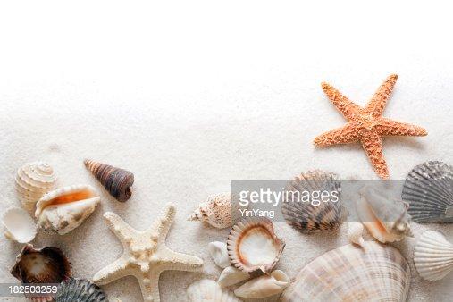 Seashell, Beach Sand and Starfish Frame Border on White Background