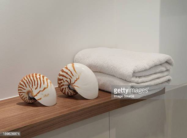 Seashells and towels on shelf