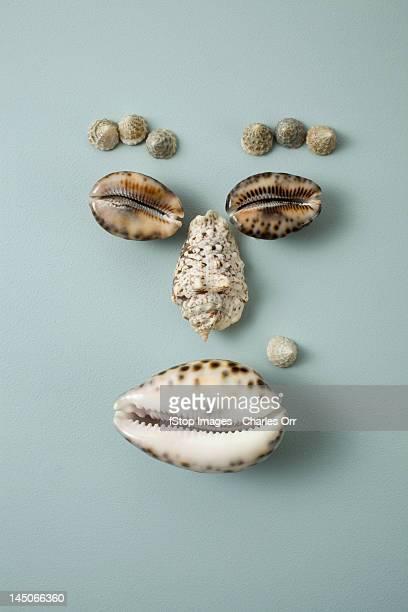 Seashells arranged into a face