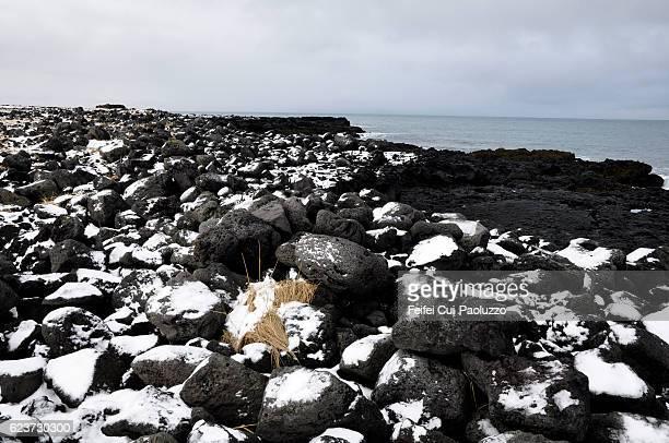 Seaside of Stykkishólmur in the west region of Iceland