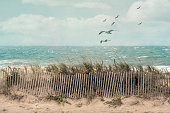 View of a beach on Cape Cod, Massachusetts, on a windy fall day with an old wooden fence, beach grass and ocean scenery.