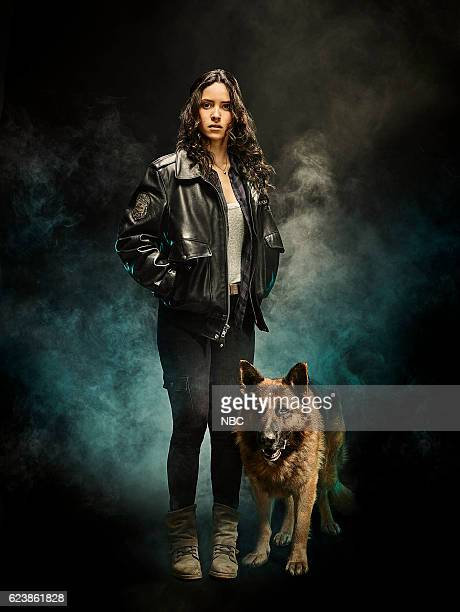 1 Pictured Adria Arjona as Dorothy Gale Toto
