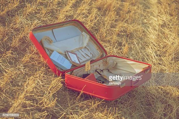 Season suitcase