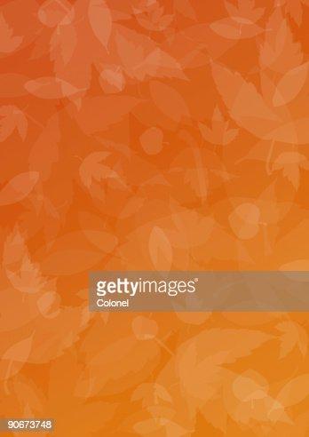 1 (por temporada de otoño