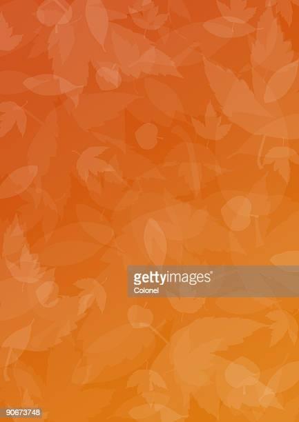 Stagione autunno/Autunno 1