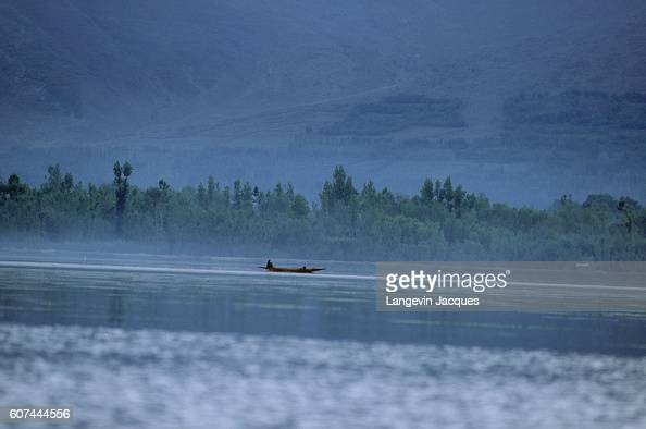 Seaweed Gatherers on Dal Lake