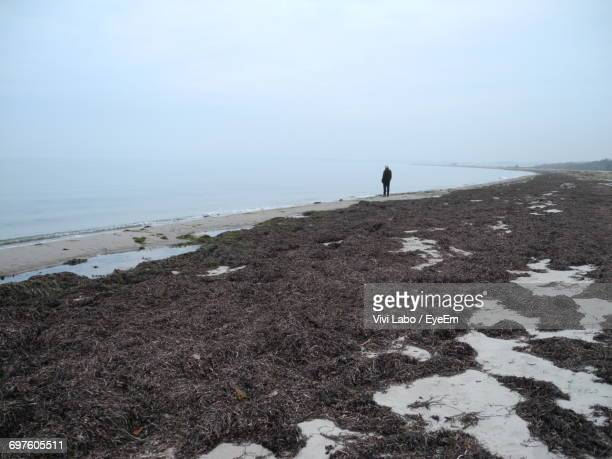 Seaweed On Shore With Man Standing On Shore At Beach