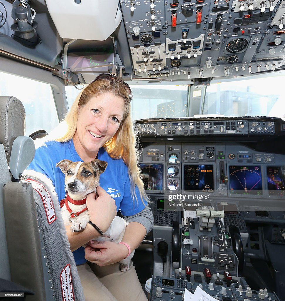 SeaWorld Rescue team member Anita Yeattes poses with a rescue dog. Sixty orphaned dogs and cats who are being flown across the country from Newark Liberty International Airport on November 17, 2012 in Newark, New Jersey, to make room for thousands of animals who need shelter as a result of Hurricane Sandy. SeaWorld's animal rescue team assists in the transport, which takes place aboard a donated Southwest Airlines flight. The pets are flying to the Helen Woodward Animal Center in San Diego, California, where they will be placed in loving homes with adoptive families.