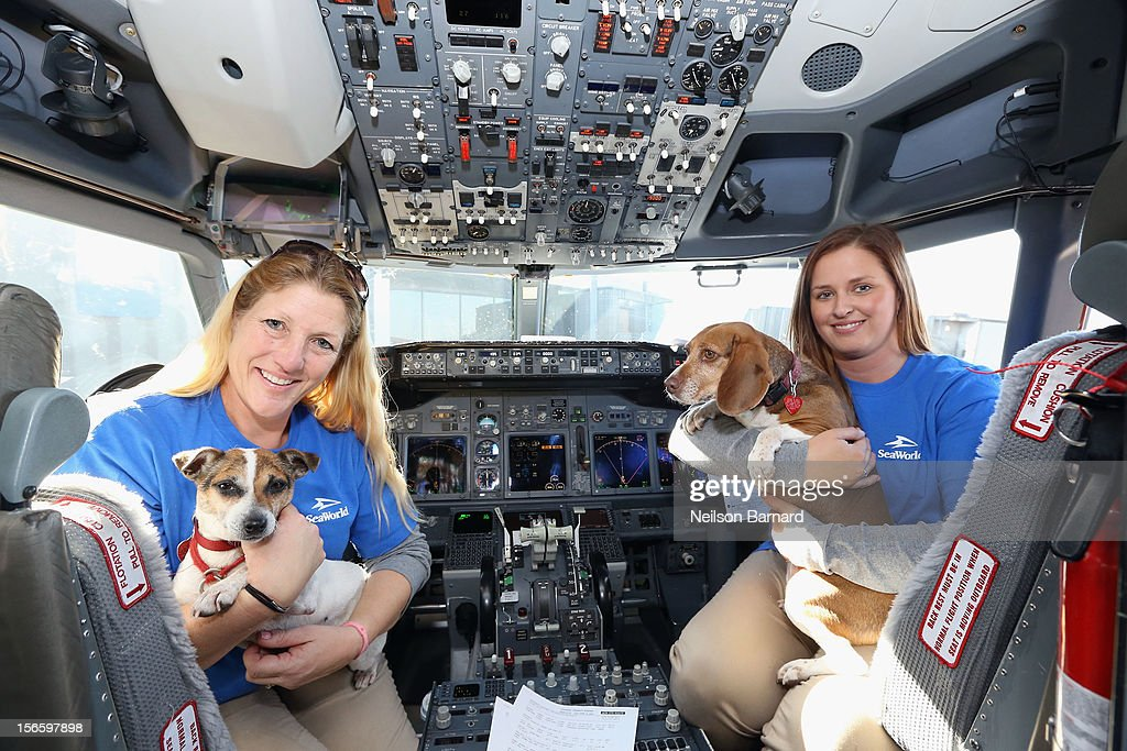 SeaWorld Rescue team members Anita Yeattes and Jessica Decoursey pose with two of the sixty orphaned dogs and cats who are being flown across the country from Newark Liberty International Airport on November 17, 2012 in Newark, New Jersey, to make room for thousands of animals who need shelter as a result of Hurricane Sandy. SeaWorld's animal rescue team assists in the transport, which takes place aboard a donated Southwest Airlines flight. The pets are flying to the Helen Woodward Animal Center in San Diego, California, where they will be placed in loving homes with adoptive families.