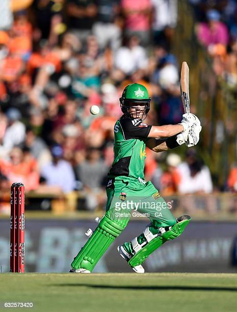 Seb Gotch of the Stars bats during the Big Bash League match between the Perth Scorchers and the Melbourne Stars at the WACA on January 24 2017 in...