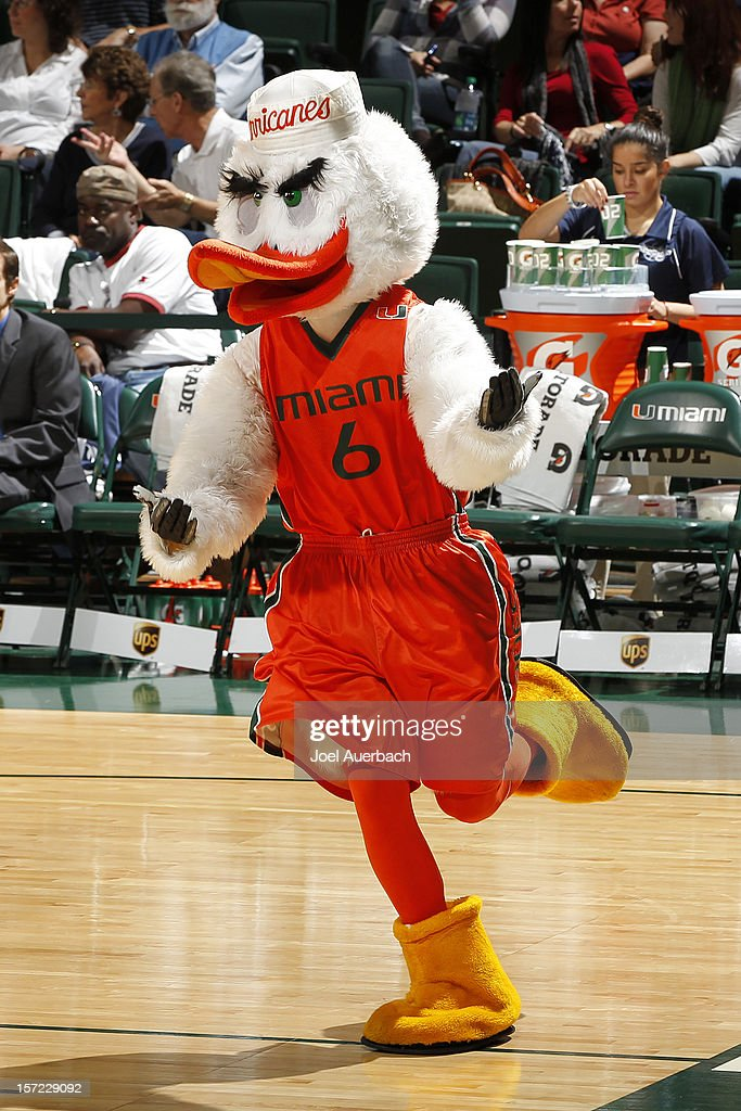 Sebastian the Ibis, the Miami Hurricanes mascot runs around the court prior to the game against the Penn State Lady Lions on November 29, 2012 at the BankUnited Center in Coral Gables, Florida. Miami defeated Penn State 69-65.
