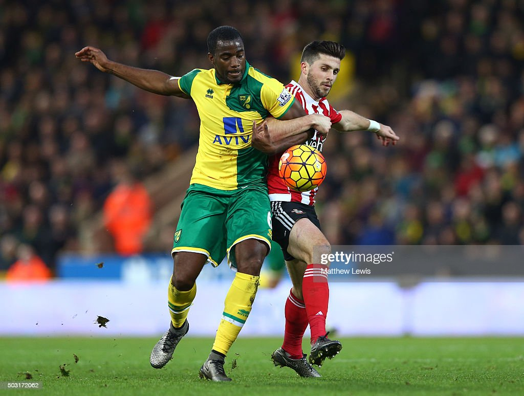Sebastien Bassong of Norwich City and Shane Long of Southampton compete for the ball during the Barclays Premier League match between Norwich City...