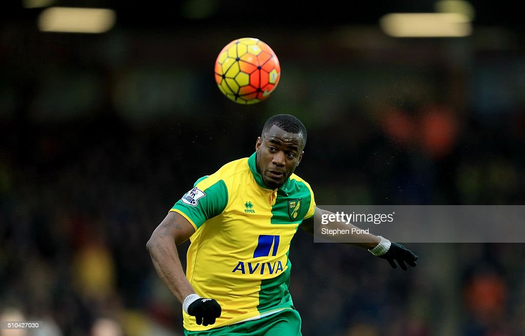 Sebastien Bassong of Norwich City during the Barclays Premier League match between Norwich City and West Ham United at Carrow Road on February 13...