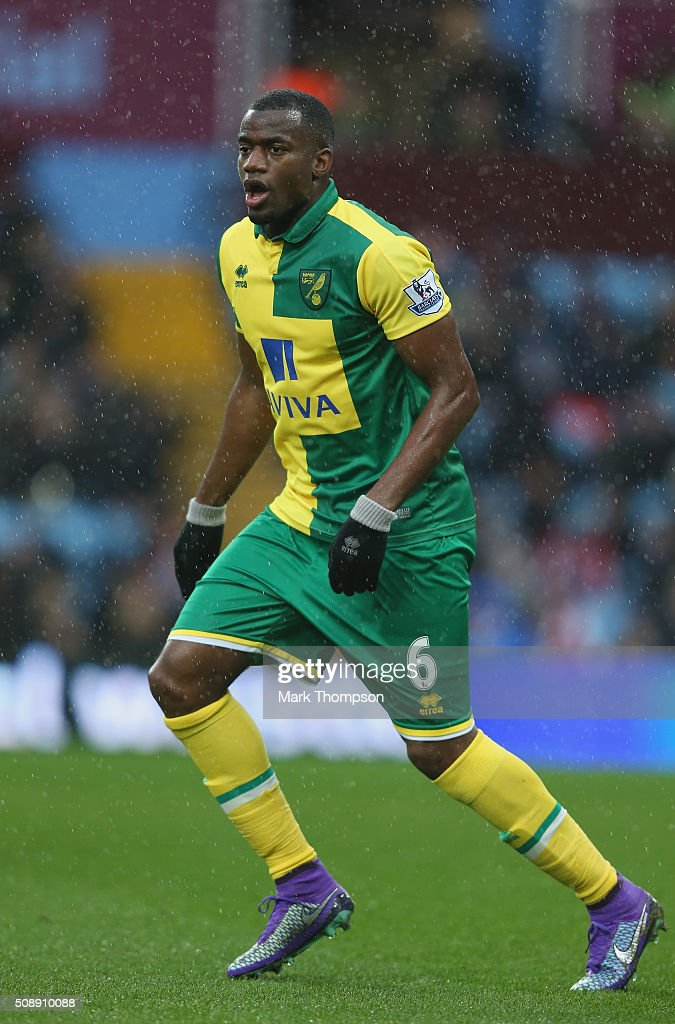 Sebastien Bassong of Norwich City in action during the Barclays Premier League match between Aston Villa and Norwich City at Villa Park on February 6...