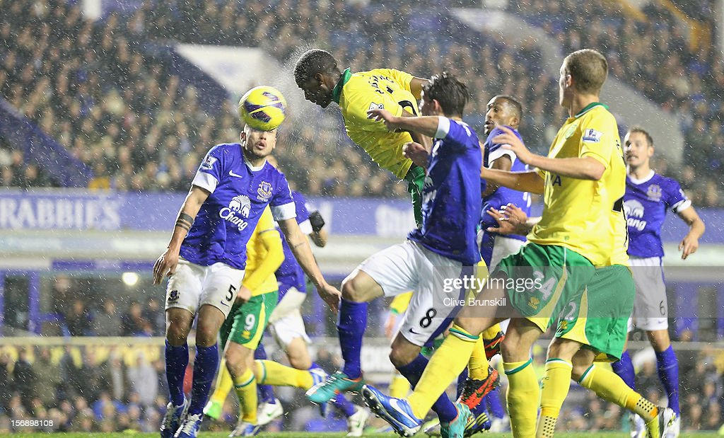 Sebastien Bassong of Norwich City scores the equaliser during the Barclays Premier League match between Everton and Norwich City at Goodison Park on...