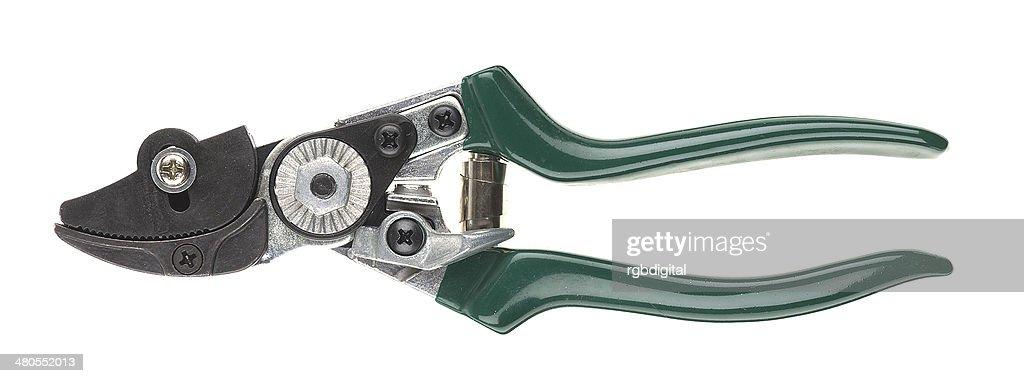 Secateurs : Foto de stock