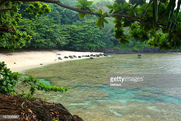 Secluded Hawaiian Beach