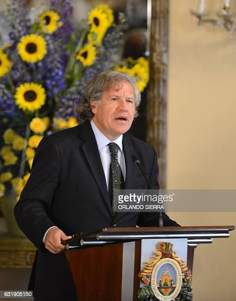 Secretary General of the Organization of American States Luis Almagro delivers a speech during the enactment of a 'Clean politics' law regarding the...