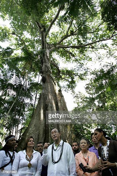 UN SecretaryGeneral Ban Kimoon speaks with local leaders in front of a centenary tree known as 'Sumauma' next to Brazil's Environment Minister Marina...
