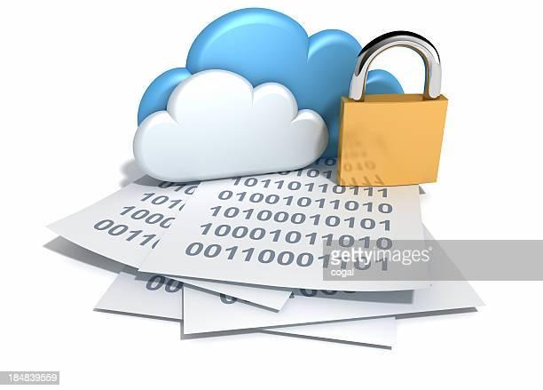 Sicurezza per il Cloud Computing.