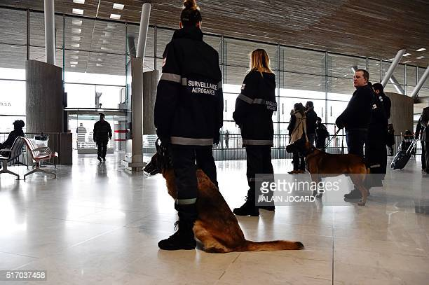 Security forces patrol with dogs at the RoissyCharlesdeGaulle International airport on March 23 in Roissy near Paris The Brussels bombings exposed...