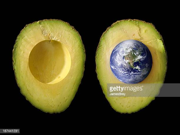 Seed of Life; Planet Earth as Pit in Green Avocado