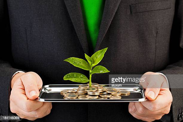 seedlings and euro coins