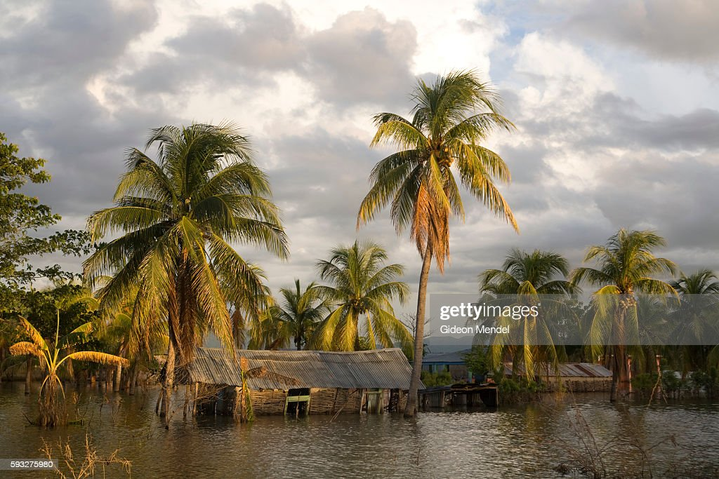 A seemingly idyllic view of some submerged houses in Savanne Desole on the outskirts of the city of Gonaives Two weeks earlier the entire city had...