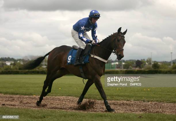 Segal ridden by Paul Moloney going to post for the Rose Lion In Bromyard Novices' Handicap Hurdle