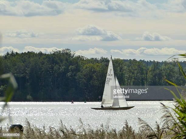 Segelboote auf dem Scharmutzelsee in Bad Saarow Landkreis Dahme Spree