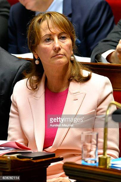 Segolene Royal French Minister of Ecology Sustainable Development and Energy reacts as Ministers answer deputies during the weekly questions to the...