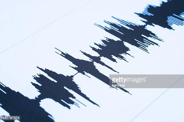 Die seismische sound wave