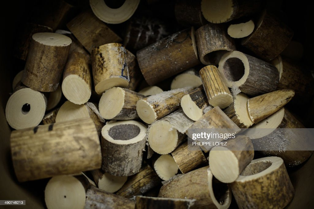 Seized ivory cut in pieces for incineration are displayed in Hong Kong on May 15, 2014. Authorities incinerated the first batch of its almost 30 tonnes of ivory seized from smugglers. AFP PHOTO / Philippe Lopez