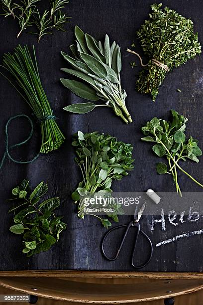 Selection of different herbs on blackboard