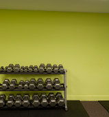 Selection of dumbbell weights arranged on rack beside green wall