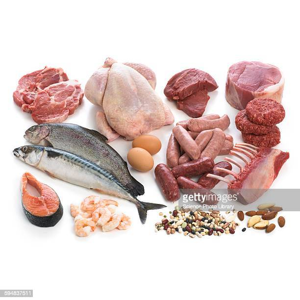 Selection of fish and meats