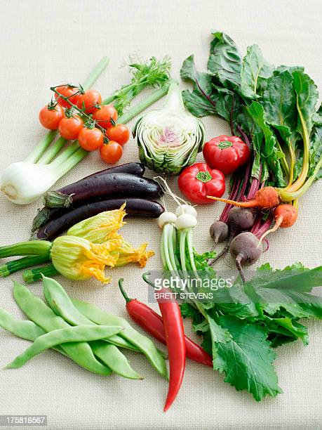 Selection of fresh ingredients