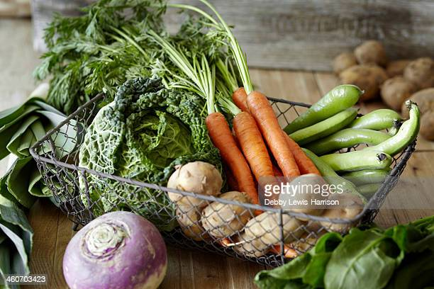 Selection of fresh vegetables in metal wire basket