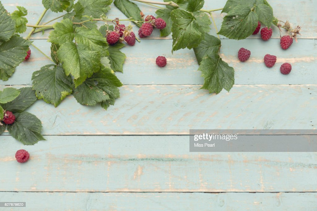 Selection of harvested raspberries on table top : Stock Photo