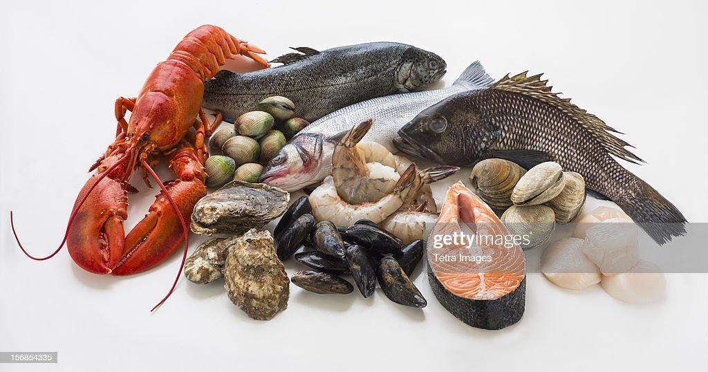 Selection of seafood, studio shot