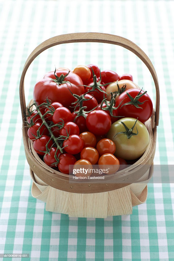 Selection of tomatoes in wooden trug on kitchen table : Stock Photo