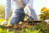 Gardening equipment. Selective focus of a gardening tool being used while planting flowers