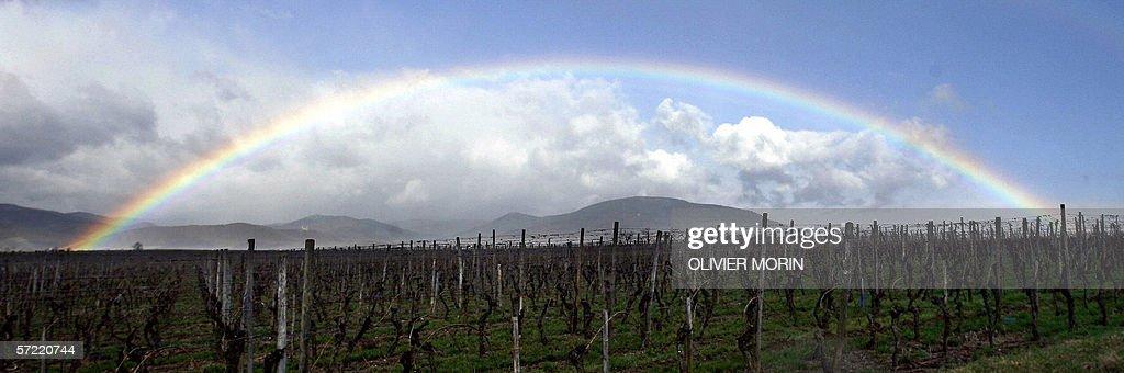 Picture of a rainbow showing up on the Vosges Mountain near Selestat, 31 march 2006. Photo prise le 31 mars 2006 representant un arc-en-ciel s'elevant au-dessus des Vosges.