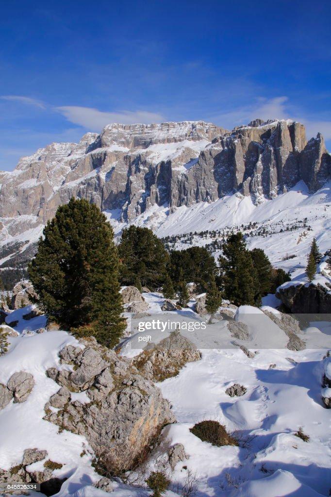 Sella Massive the Dolomites Italy at winter : Stock Photo