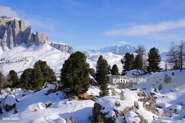 Sella Massive the Dolomites Italy at winter