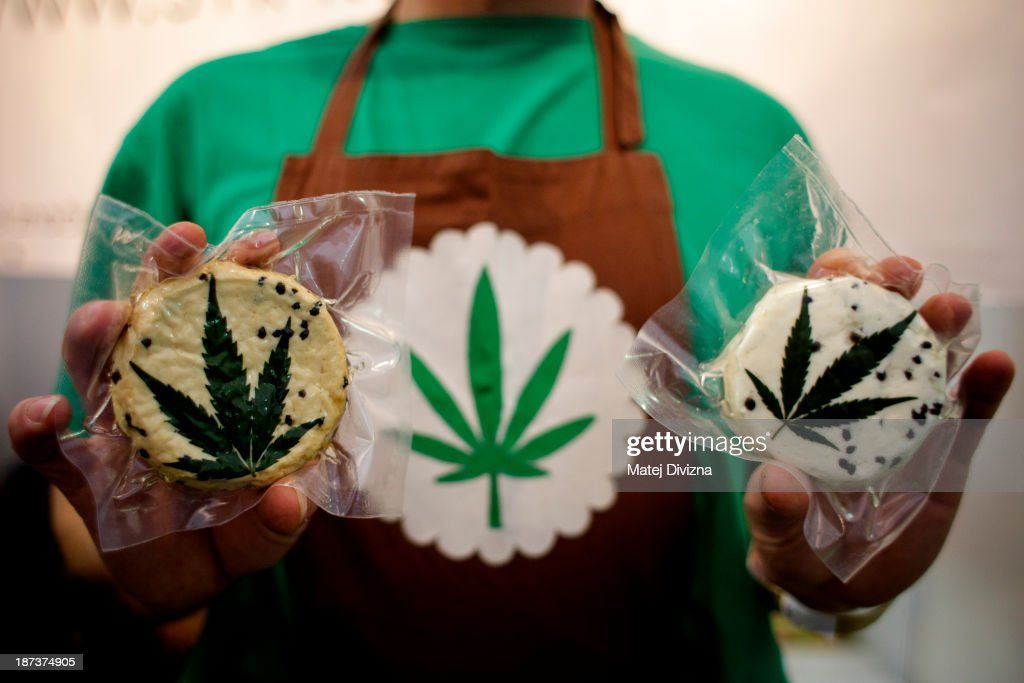 A seller poses with hemp cheese during 4th Cannafest International Hemp Fair on November 8, 2013 in Prague, Czech Republic. According to organisers, Cannafest Prague is the largest international hemp fair in Europe and is not only for the fans of cannabis but also for the laymen who want to extende their knowledge of this plant. Exhibitors will be showing off products and services in six main categories: Natural resources, Growing, Paraphernalia, Art, Media, Institutions and will be held from November 8-10.