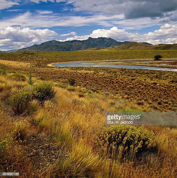 Semidesert steppe Pampa de Agna Argentina