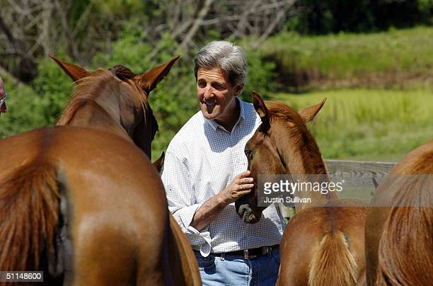 S Sen John Kerry pets horses while visiting the Nelson Family Farm August 6 2004 in Smithville Missouri Kerry continues on the twoweek500 mile...