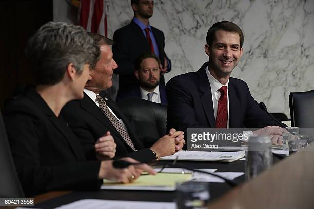 US Sen Joni Ernst Sen Michael Rounds and Sen Tom Cotton chat prior to a hearing before the Senate Armed Services Committee September 13 2016 on...